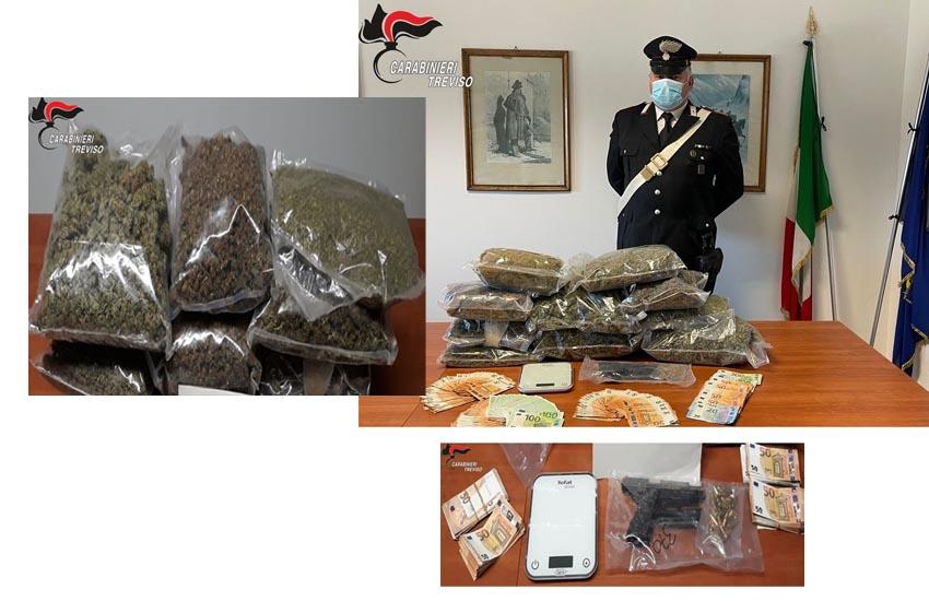 Tre arresti con ingente sequestro di stupefacente e denaro nella Marca. Rinvenuta anche una pistola illegalmente detenuta