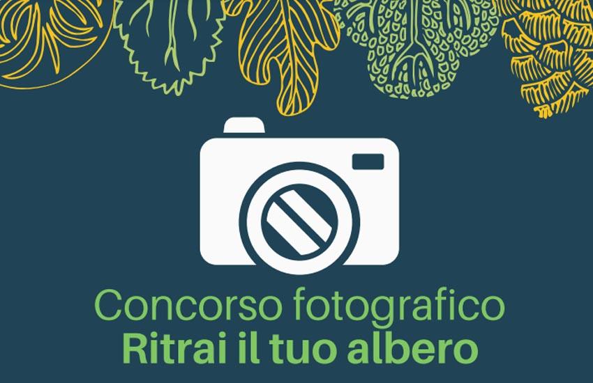 """Paese, fino al 5 aprile il concorso fotografico """"Ritrai il tuo albero"""""""