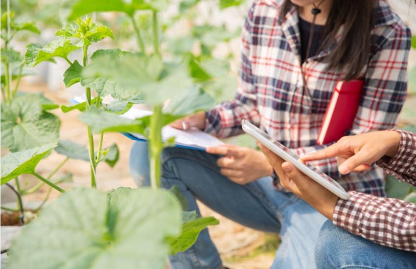 TREVISO PRIMA PROVINCIA IN VENETO CON 3502 AZIENDE AGRICOLE FEMMINILI NEL 2020