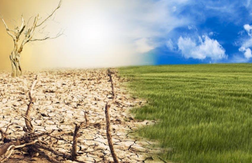 COLDIRETTI VENEZIA: GRAVE SICCITA' NEI CAMPI. UN PROBLEMA PER LE COLTURE