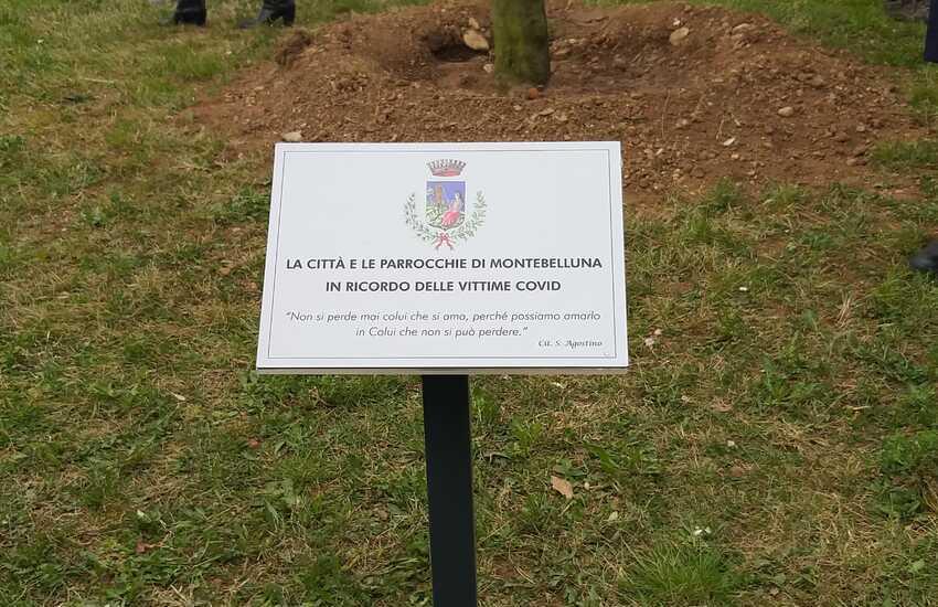 Montebelluna, un ulivo in ricordo delle vittime del Covid-19