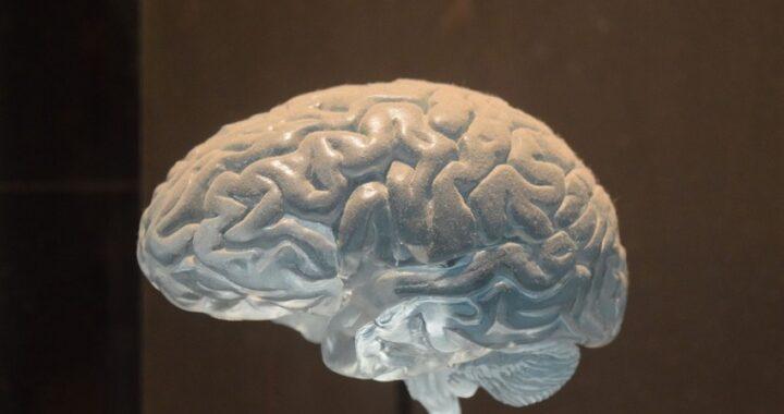 Visita neurologica: quando serve e come si svolge