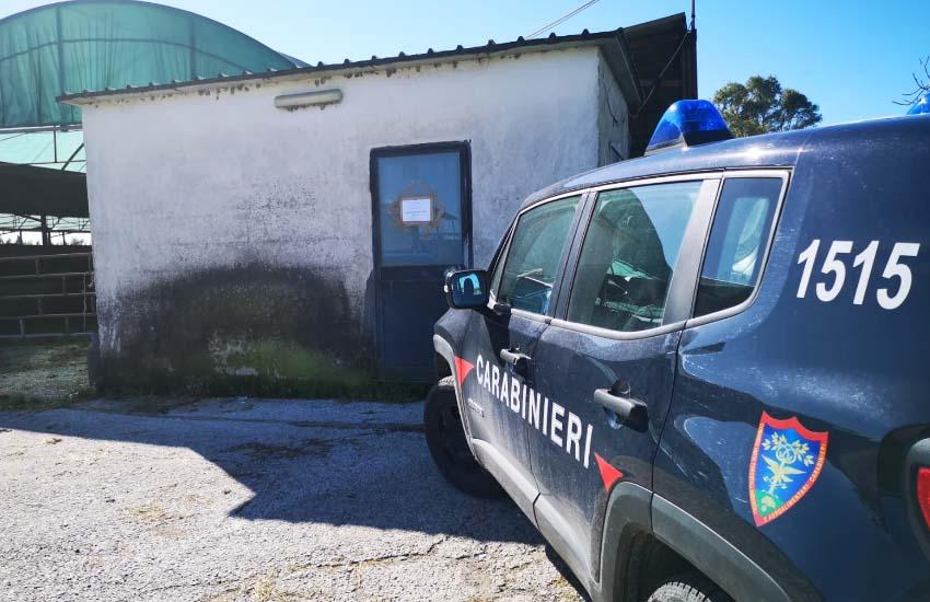 Inquinamento ambientale e gestione illecita di rifiuti speciali a Castel Volturno