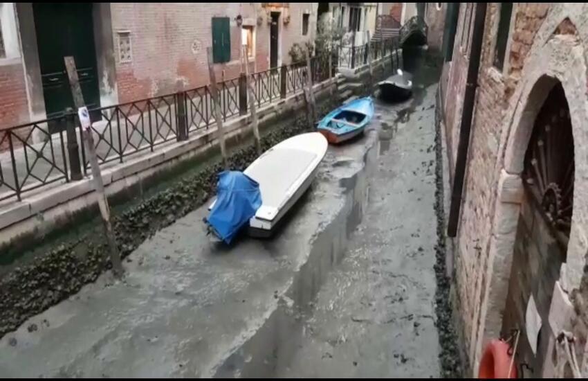 Venezia in secca diventa virale
