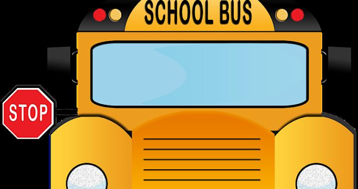 Trasporto scolastico per studenti disabili