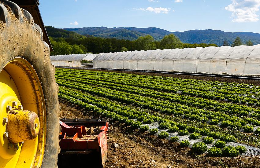 Contributi dalla Regione Piemonte ai Comuni piemontesi che ospitano lavoratori stagionali nelle aziende agricole