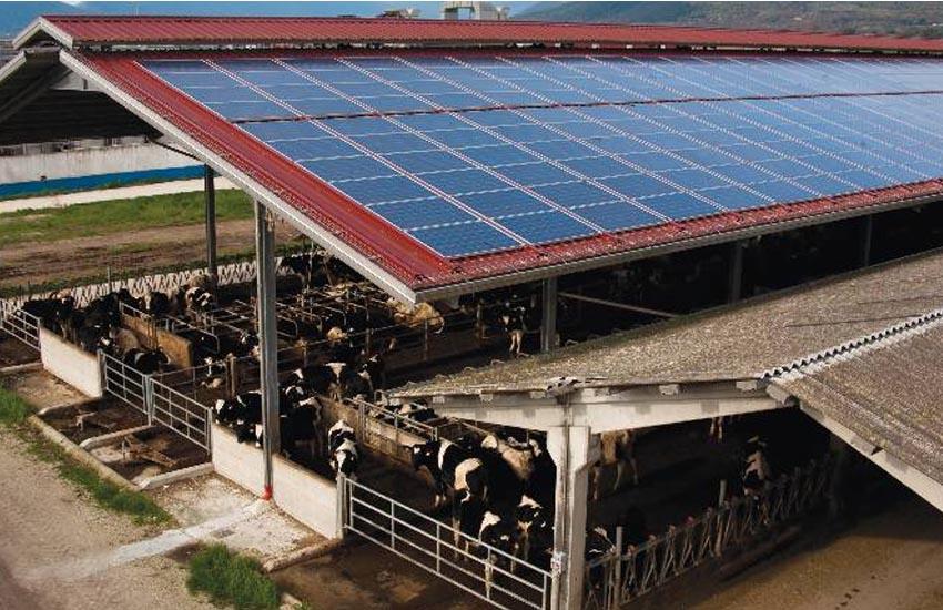 Coldiretti: «Produrre energia solare senza distruggere campi coltivati si può»