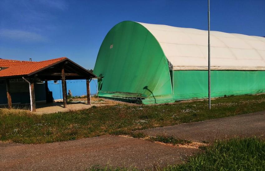 Sezze, la struttura di via Roccagorga nel degrado: la denuncia della Basket Academy