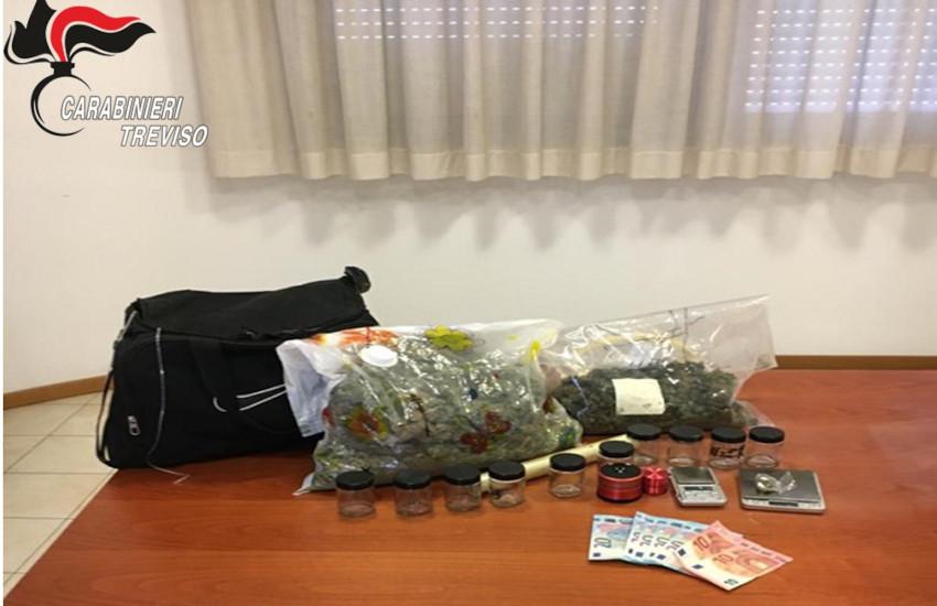 Treviso, arrestato con 1,8 chili di marijuana