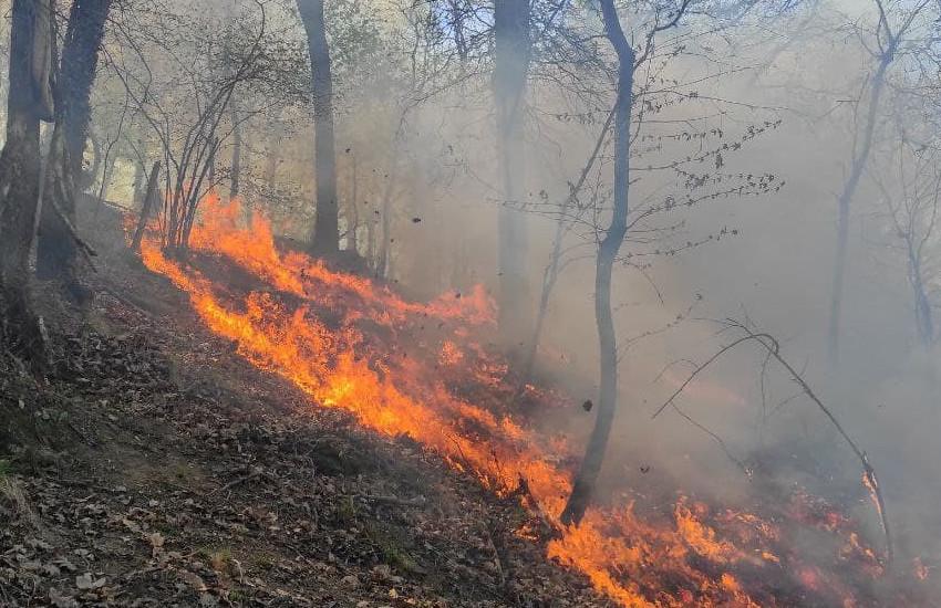 Incendio a Framura, 3 giorni di incendi hanno bruciato 100 ettari bosco
