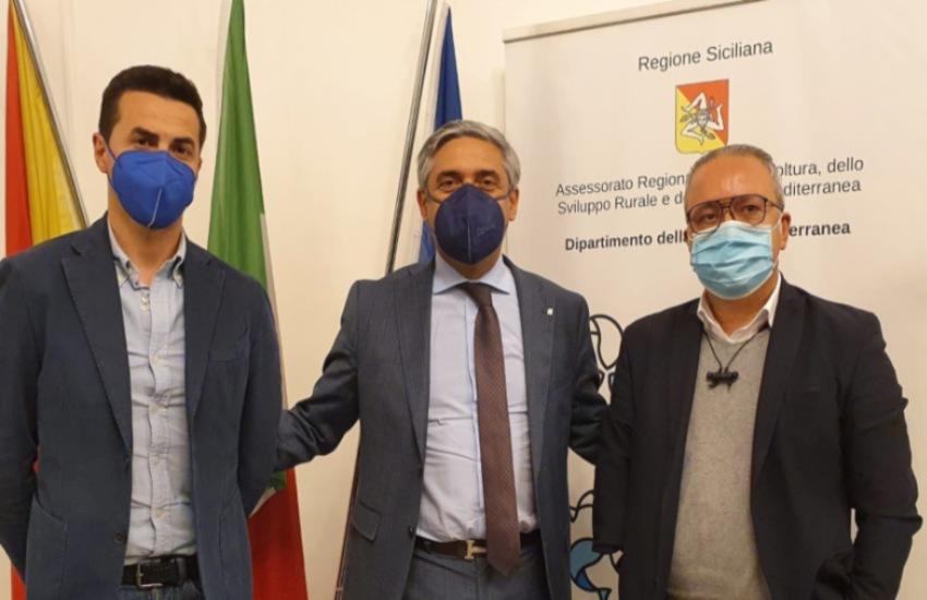 Malluzzo e Sammito incontrano l'assessore regionale Scilla: scongiurare siccità, reperire somme e dare serenità agli agricoltori