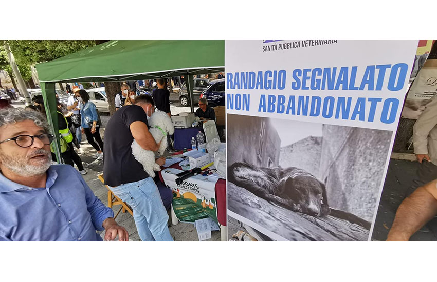 Marcianise, in piazza Umberto I Ecodays: una giornata di microchip per gli amici cani