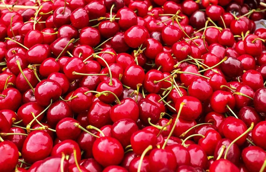 Maltempo, frutta: i primi raccolti arrivano con circa 10 giorni di ritardo