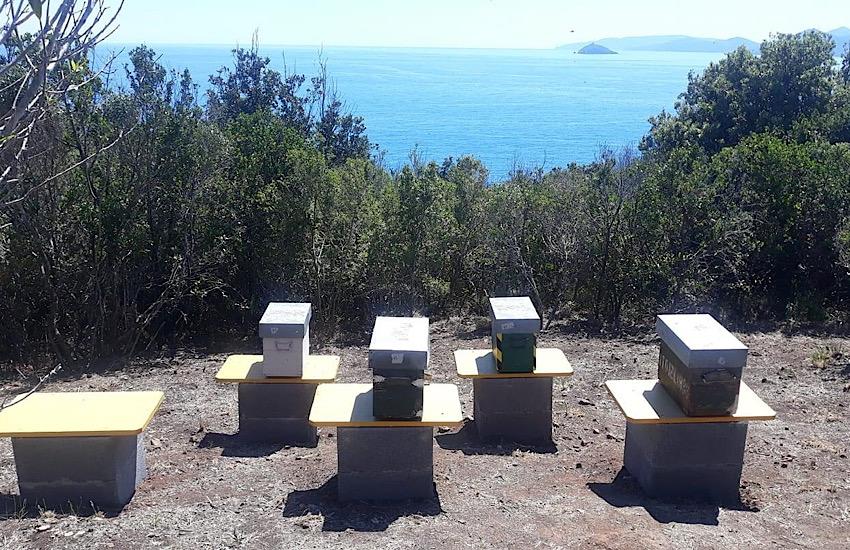 Arnie didattiche posizionate a Punta Falcone