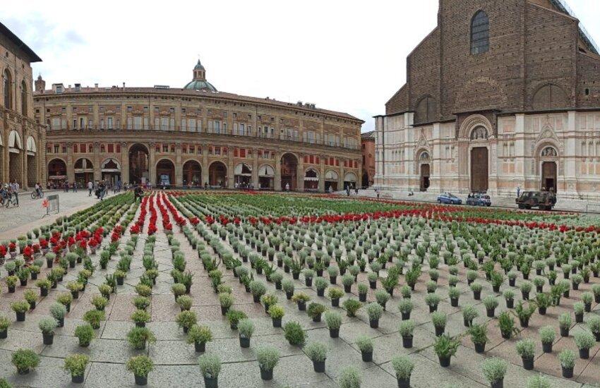 6000piantine: 10 giorni per salvare i Circoli Arci di Bologna