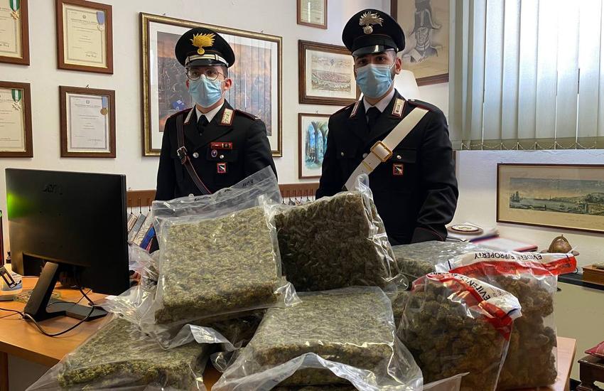 Bologna: intercettato un carico di oltre 15 kg di marijuana