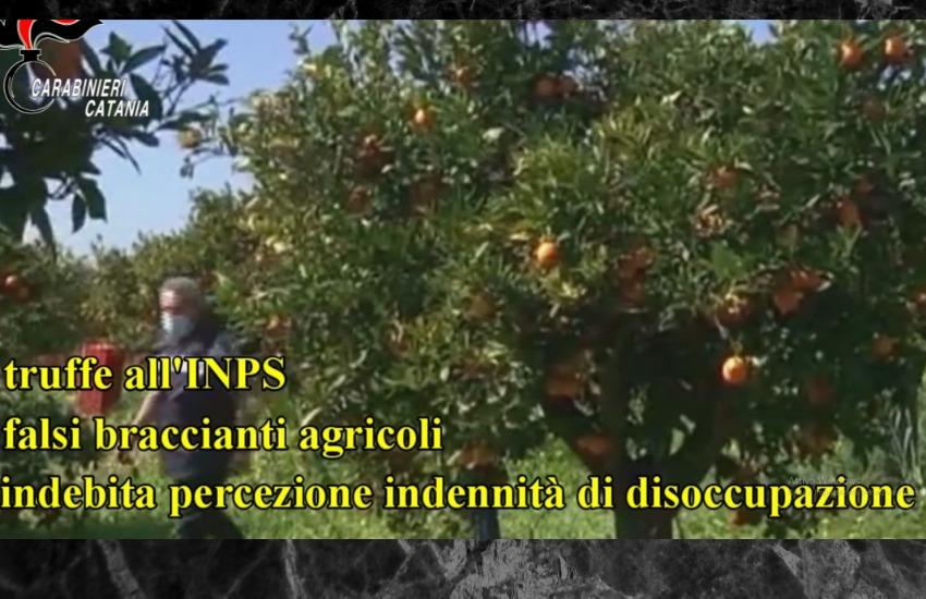 Catania, operazione sotto scacco, arrestate 40 persone affiliate a Cosa Nostra per truffe all' INPS