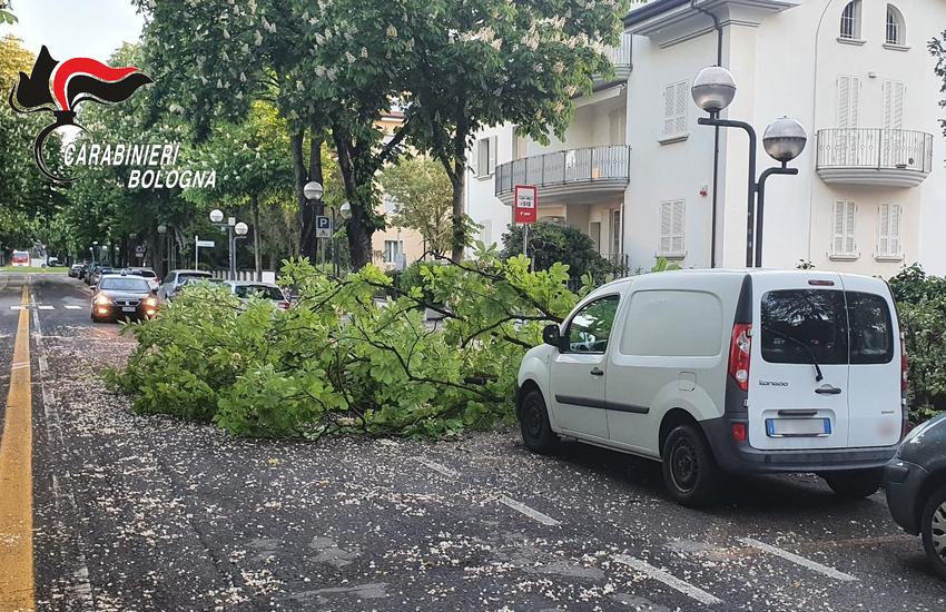 Forti raffiche di vento nel bolognese: registrati danni