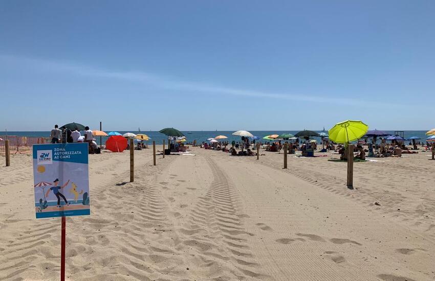 Catania, aggiudicata la gara d'appalto per le spiagge libere comunali con nuovi servizi