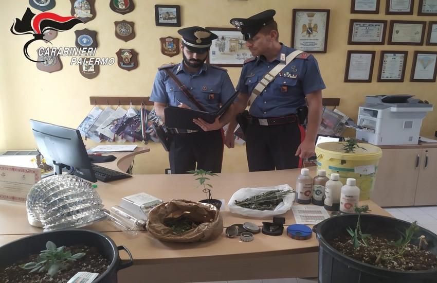 Bolognetta – Piantagione di droga indoor, i Carabinieri arrestano padre e figlio