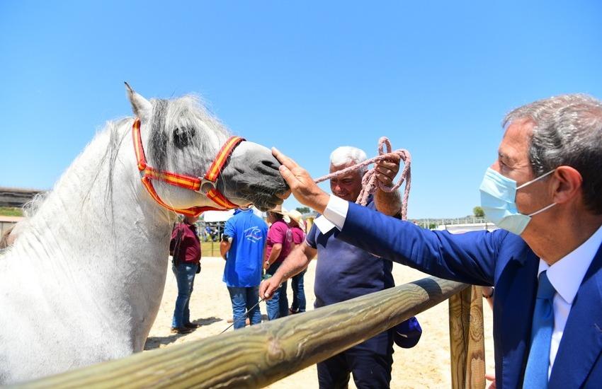 """Catania, sport equestri, ad Ambelia aperta la """"Fiera mediterraneo del cavallo"""""""