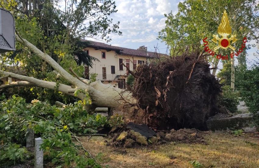Maltempo, tromba d'aria su Novarese e Vercellese: la Regione chiede lo stato di emergenza