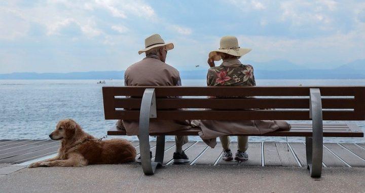 Asta, giornata nonni: il ruolo degli animali per il benessere degli anziani