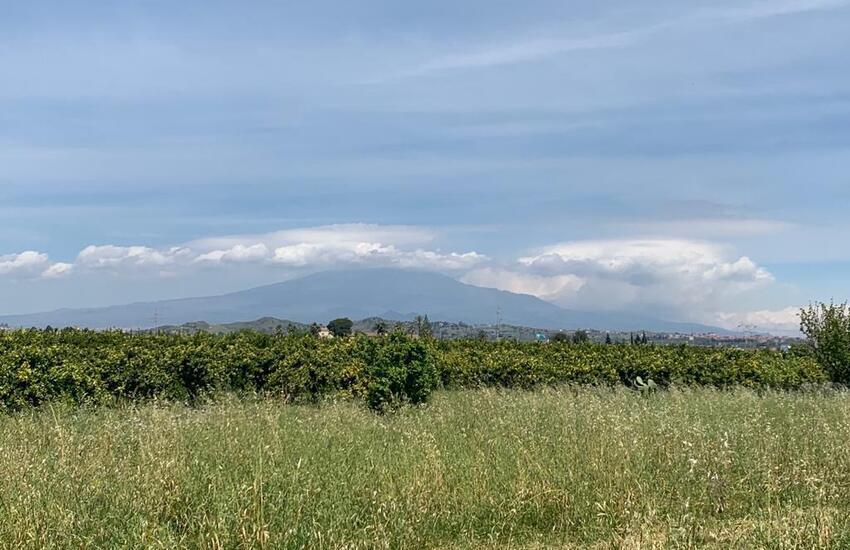 Catania, 30 ettari di terreni agricoli confiscati alla mafia affidati ad associazioni per usi sociali