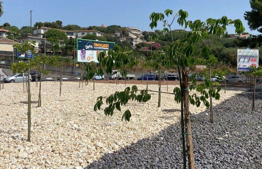 San Nullo, riqualificata la rotatoria dell'Etna, sessanta alberi piantumati