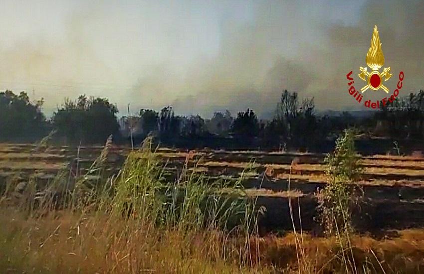 In fiamme 50 ettari tra il ponte Primosole e fiume Gornalunga: Vigili del Fuoco e Forestale sul posto – FOTO