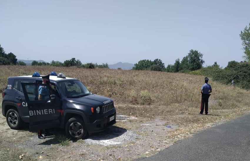Montalbano Elicona, famiglia di allevatori arrestati per estorsione e lesioni aggravate.Imponevano alle vittime il pascolo delle loro mandrie sui propri terreni