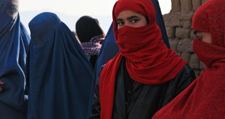 """Profughi afghani, Ciuoffo: """"La scelta di inserirli nel Cas è un'anomalia che deve essere superata"""""""