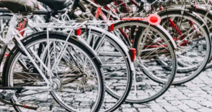 Padova, nove biciclette a disposizione dei dipendenti comunali, alcune biciclette destinate all'asta convertite per permettere spostamenti in facilità