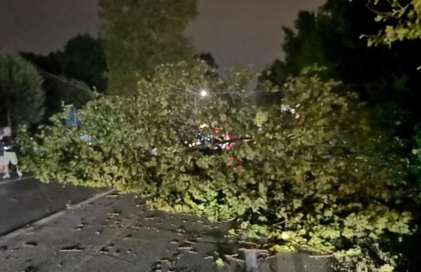 Mogliano, danni maltempo 16 agosto: ecco cosa deve fare chi ha avuto danni