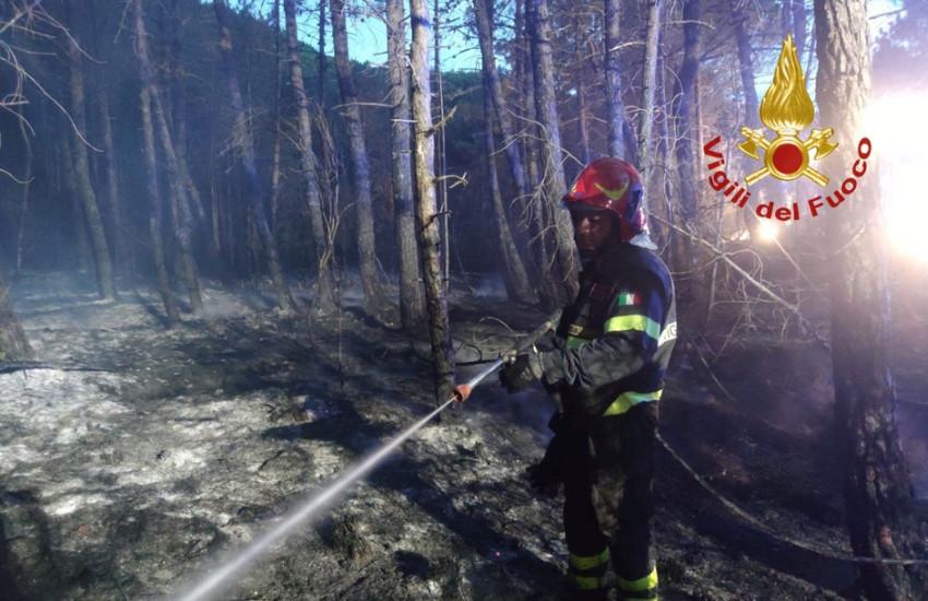 Gavorrano (Grosseto): incendio boschivo