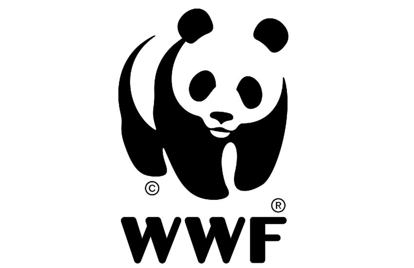 Troina – WWF Sicilia si congratula con i Carabinieri per l'arresto di eco-criminali