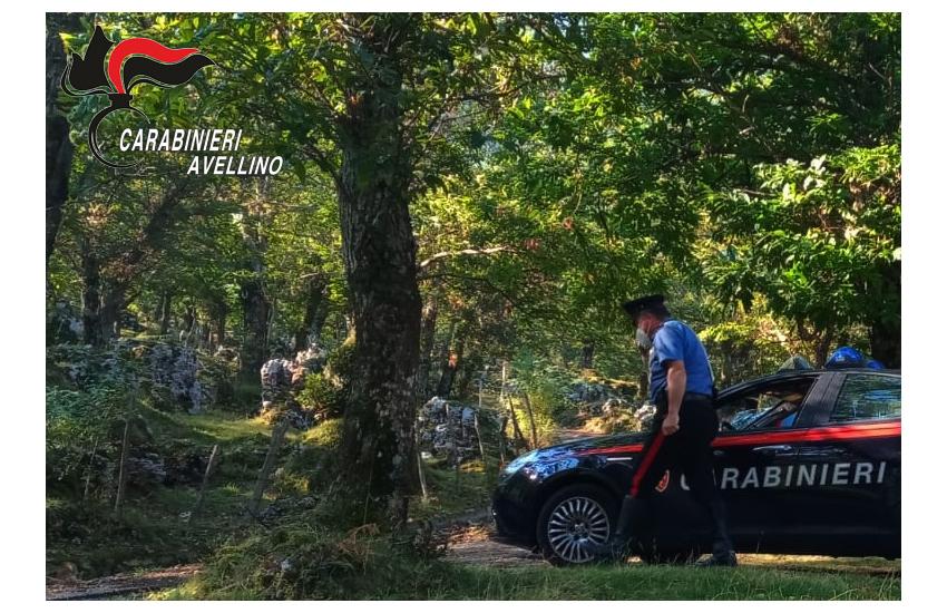 Solofra, i carabinieri riescono a trovare 2 ventenni che si erano persi fra i boschi Picentini