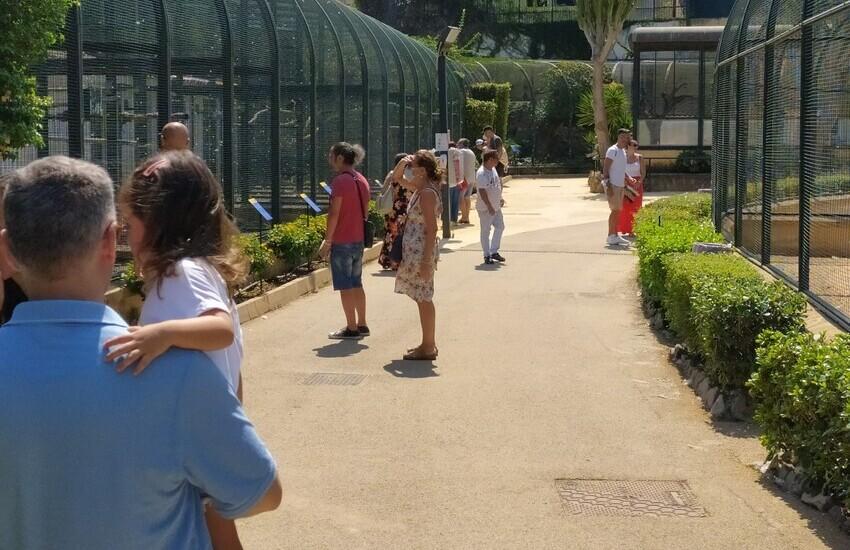 Palermo, boom di visitatori nei Giardini della Regione: 30 mila in un mese