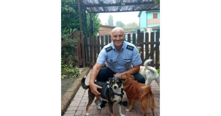 Albignasego, il cagnolino Blady torna dal suo proprietario