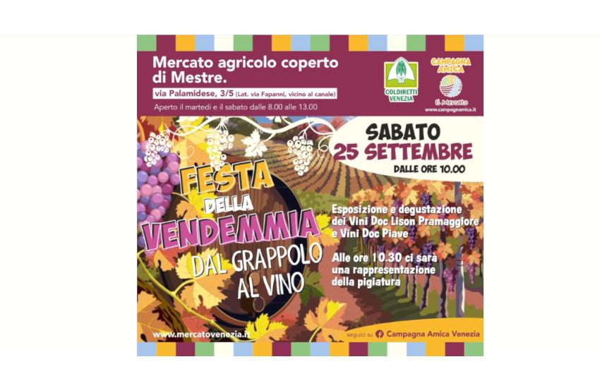 Mestre, sabato al mercato agricolo di Campagna Amica mostra e degustazioni dei vini doc Lison Pramaggiore e doc Piave. Alle 10.30 la rievocazione della pigiatura