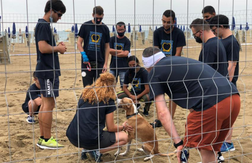 """Spiagge inclusive: le tre Ulss """"balneari"""" a Chioggia oggi tracciano il bilancio di un altro anno di lavoro"""