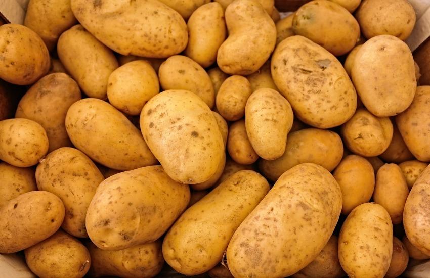 Novalesa (TO), domenica 19 la Fiera della Patata, della Toma e della Cipolla